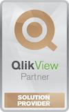 Logo QLIK NonCertified Solution Provider